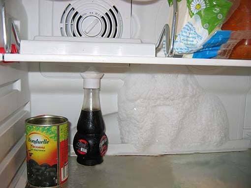На задней стенке холодильной камеры намерзает лед